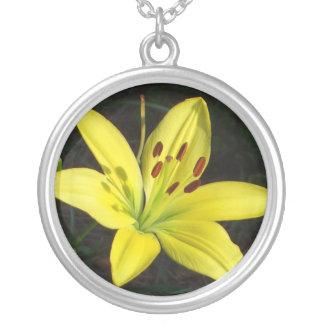 CA collar amarillo de la flor del lirio