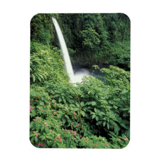 CA Costa Rica Cascada e impatients de La Paz Imán