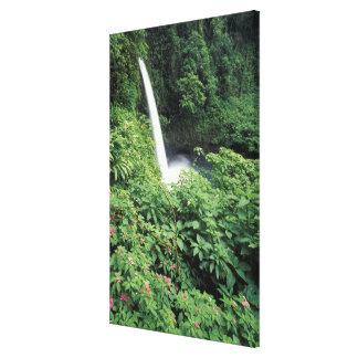 CA Costa Rica Cascada e impatients de La Paz Impresión En Lona