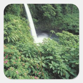 CA Costa Rica Cascada e impatients de La Paz Calcomania Cuadradas Personalizada