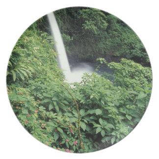 CA Costa Rica Cascada e impatients de La Paz Plato Para Fiesta