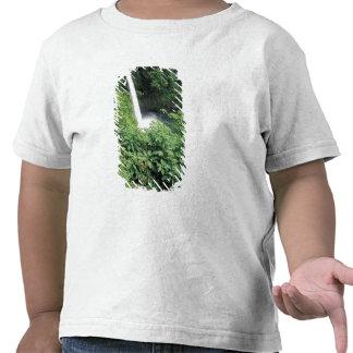 CA Costa Rica Cascada e impatients de La Paz Camisetas