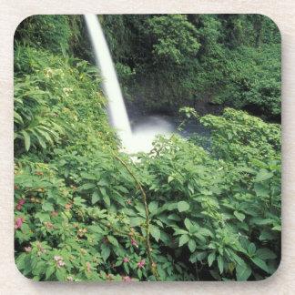 CA Costa Rica Cascada e impatients de La Paz Posavasos