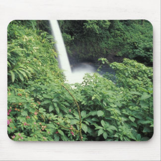 CA Costa Rica Cascada e impatients de La Paz Alfombrilla De Raton