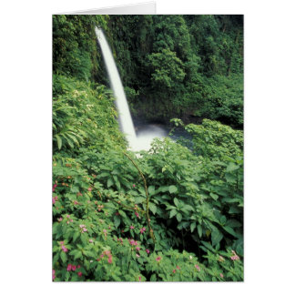 CA Costa Rica Cascada e impatients de La Paz Tarjetón