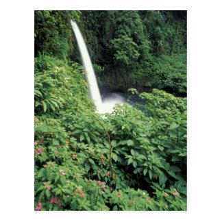 CA Costa Rica Cascada e impatients de La Paz Tarjeta Postal