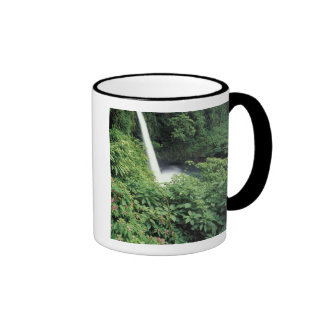 CA Costa Rica Cascada e impatients de La Paz Tazas De Café