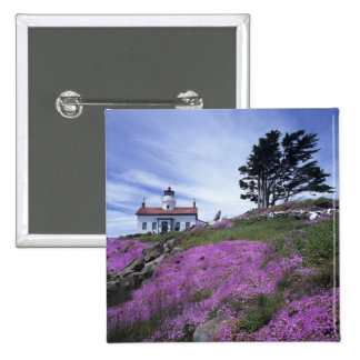 CA, Crescent City, Battery Point lighthouse with Button