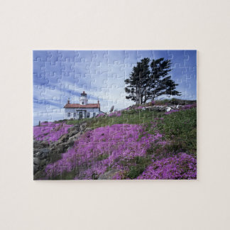CA, Crescent City, Battery Point lighthouse with Jigsaw Puzzle