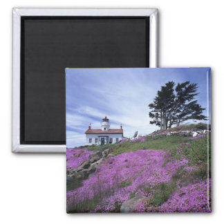 CA, Crescent City, Battery Point lighthouse with Magnet
