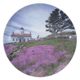CA, Crescent City, Battery Point lighthouse with Melamine Plate