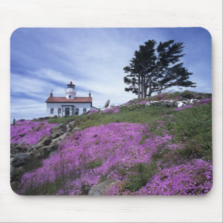 CA, Crescent City, Battery Point lighthouse with Mouse Pad