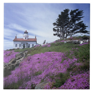CA, Crescent City, Battery Point lighthouse with Large Square Tile