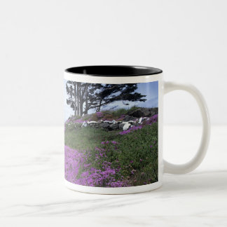 CA, Crescent City, Battery Point lighthouse with Two-Tone Coffee Mug