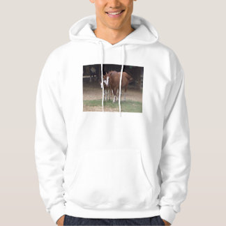 CA- Horses Photography T-shirt or Hoody