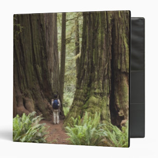 CA, Jedediah Smith Redwoods State Park, 3 Ring Binder