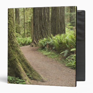 CA, Jedediah Smith State Park, Simpson-Reed 3 Ring Binders
