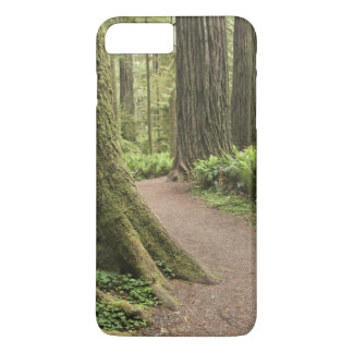 CA, Jedediah Smith State Park, Simpson-Reed iPhone 8 Plus/7 Plus Case