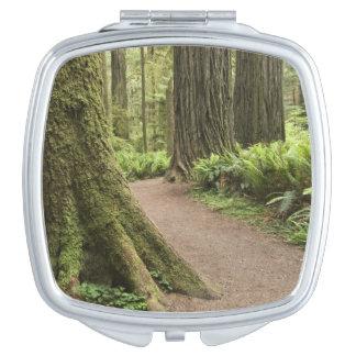 CA, Jedediah Smith State Park, Simpson-Reed Makeup Mirror