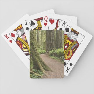 CA, Jedediah Smith State Park, Simpson-Reed Playing Cards