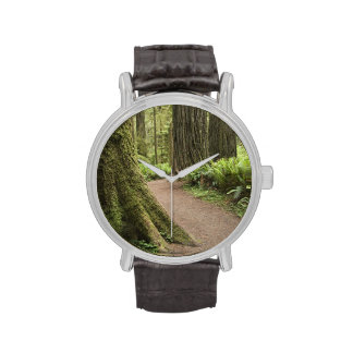 CA, Jedediah Smith State Park, Simpson-Reed Wrist Watch