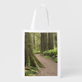 CA, Jedediah Smith State Park, Simpson-Reed Grocery Bags