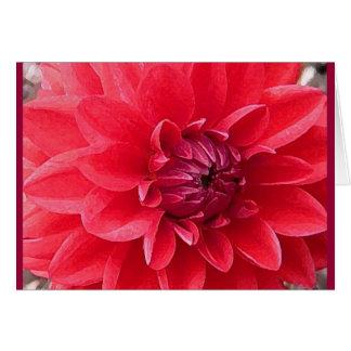 CA la flor roja le agradece observar Tarjeta De Felicitación