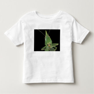 CA, Panama, Barro Colorado Island.  Green Toddler T-shirt
