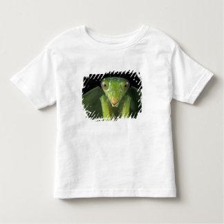 CA, Panama, Barro Colorado Island. Praying Toddler T-shirt