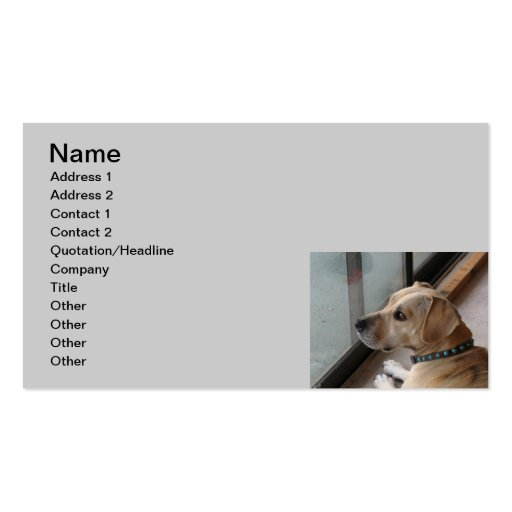 CA Pet Sitting Business Cards