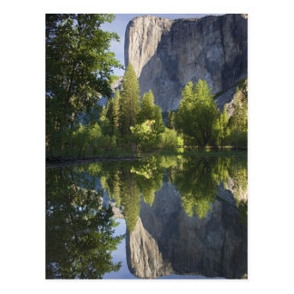 CA, Yosemite NP, El Capitan reflected in Merced Postcard