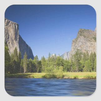CA, Yosemite NP, opinión del valle con el EL Pegatina Cuadrada