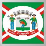 Caarapo Mato Grossodo Sul, el Brasil Póster