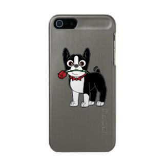 Caballero americano de Boston Terrier con el rosa Carcasa De Iphone 5 Incipio Feather Shine