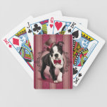 Caballero Boston Terrier Cartas De Juego