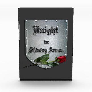 Caballero medieval en el escudo brillante de la