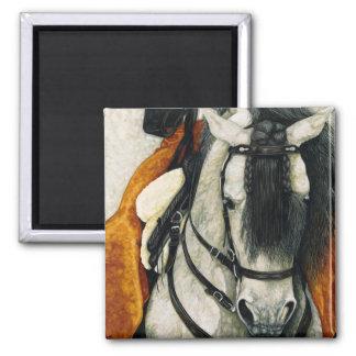 Caballero - Spanish Stallion Magnet