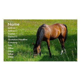 Caballo 1 plantilla de tarjeta personal