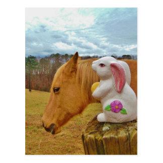 Caballo amarillo, conejo de la primavera postales