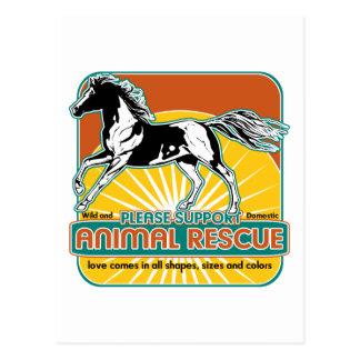 Caballo animal del rescate postal