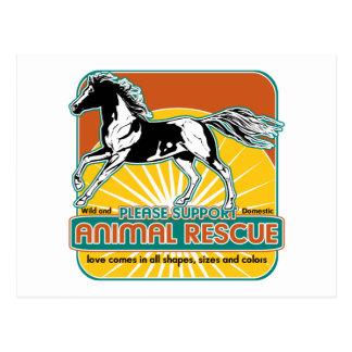 Caballo animal del rescate tarjeta postal
