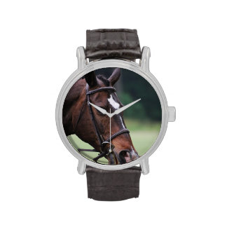 Caballo árabe con blanco en cara reloj de mano