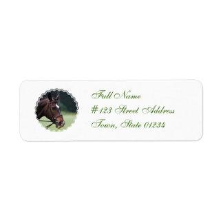 Caballo árabe con blanco en etiqueta de correo de etiquetas de remite