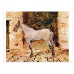 Caballo atado de Enrique de Toulouse-Lautrec Tarjeta Postal