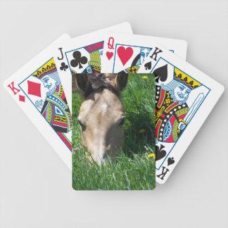 Caballo Baraja Cartas De Poker
