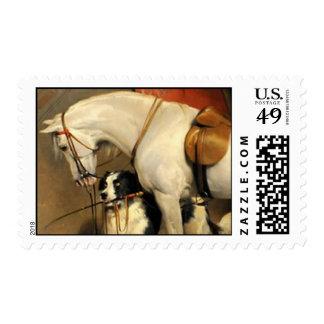 Caballo blanco con los perros sello