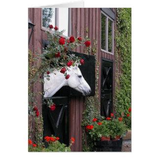 Caballo blanco con los rosas tarjeta de felicitación