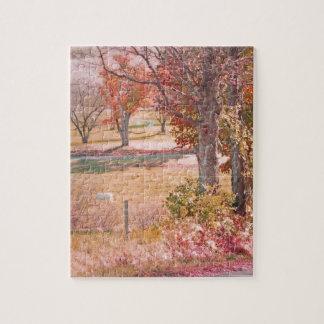 Caballo blanco con moho y colores verdes del otoño puzzles con fotos