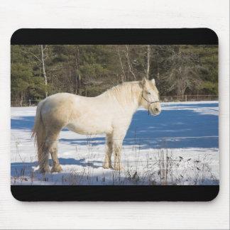 Caballo blanco en el invierno Maine rural Alfombrilla De Ratones