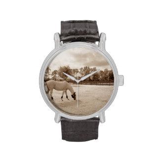 caballo blanco en pasto que pasta sepia relojes de mano